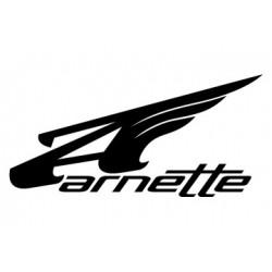 Rechange pour Lunettes Arnette